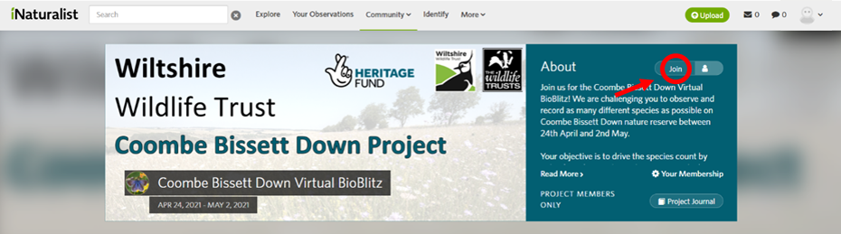 Screenshot of the Coombe Bissett Down Bioblitz page