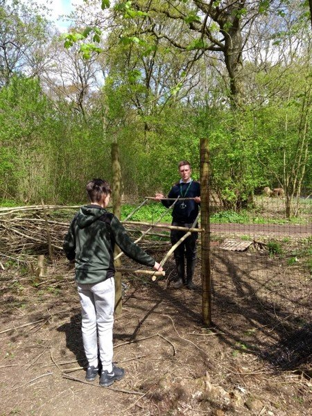 Milestones Project at Green Lane wood and biss wood