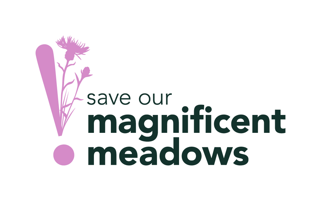 Magnificent Meadows Logo