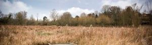 Smallbrook Meadows © Owain Shaw