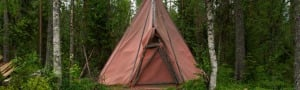Tent in woodland