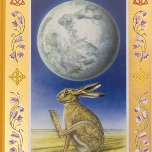 The Hare On The Moon treasure hunt book