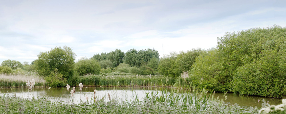Swindon lagoons © Ryan Tabor