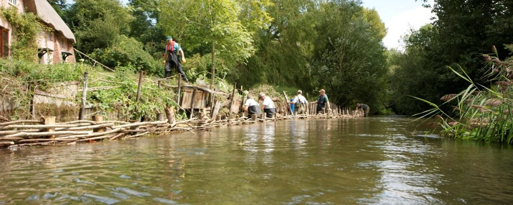 WCSP and volunteers installing natural bank protection on the Wylye (WWT©, 2014)
