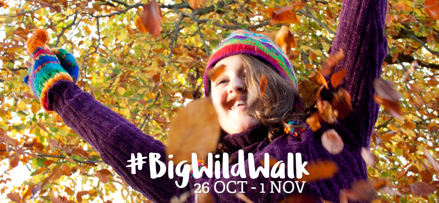 Join our Big Wild Walk this half term