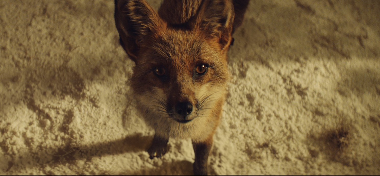 Still from John Lewis christmas advert