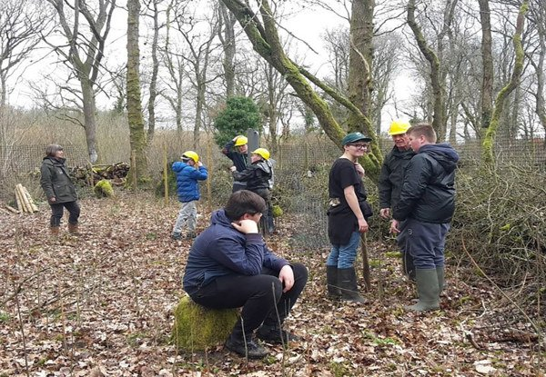 Milestones project coppicing at Green Lane Wood and Biss Wood