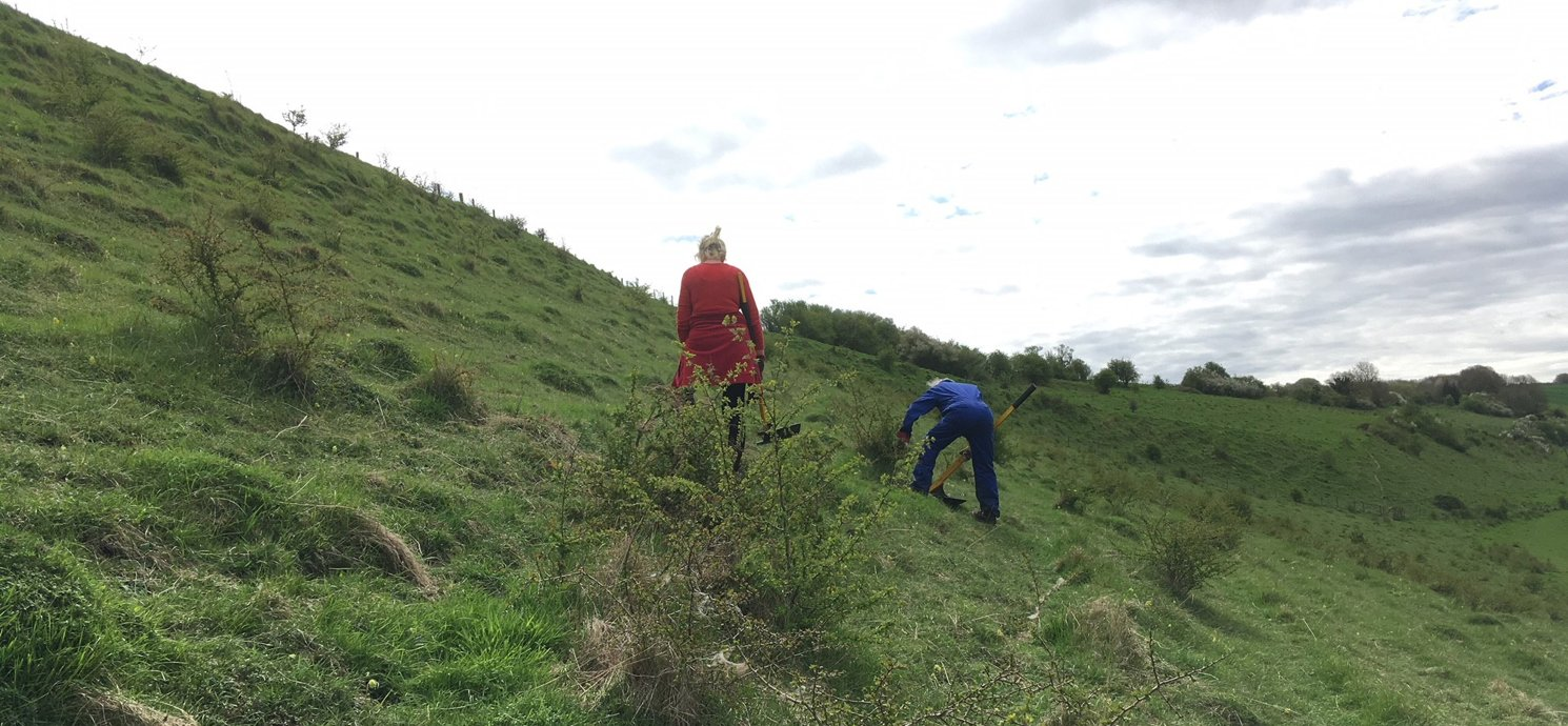 Volunteering at Coombe Bissett Down